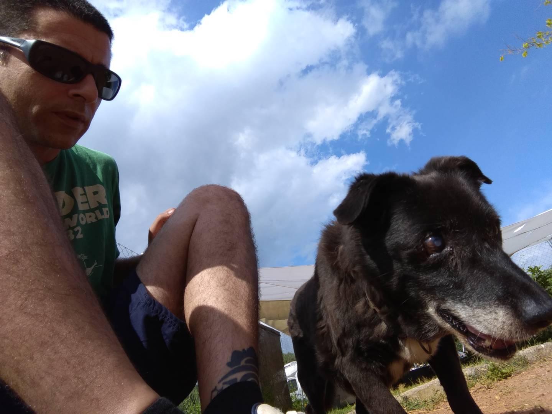 Vídeo en 360º de perro mayor y ciego haciendo ejercicios de estimulación olfativa
